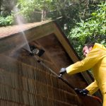 Painting Tip: Early Summer House Protection